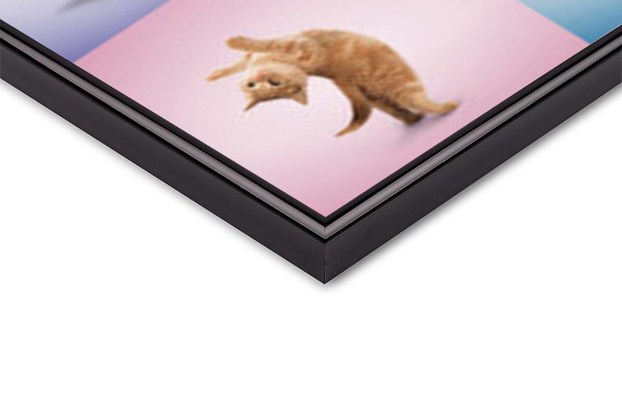Yoga - Katjes Poster
