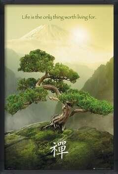 Ingelijste poster Zen
