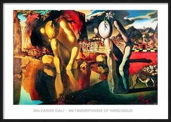 Ingelijste poster Salvador Dali - Metamorphosis Of Narcissus