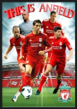 Liverpool - players 2010 Poster 3D