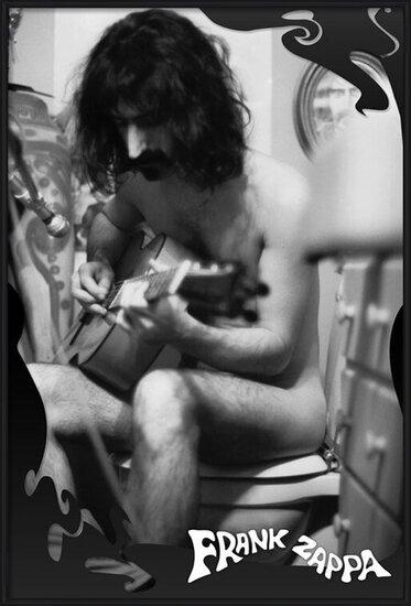 Frank Zappa - guitar Poster