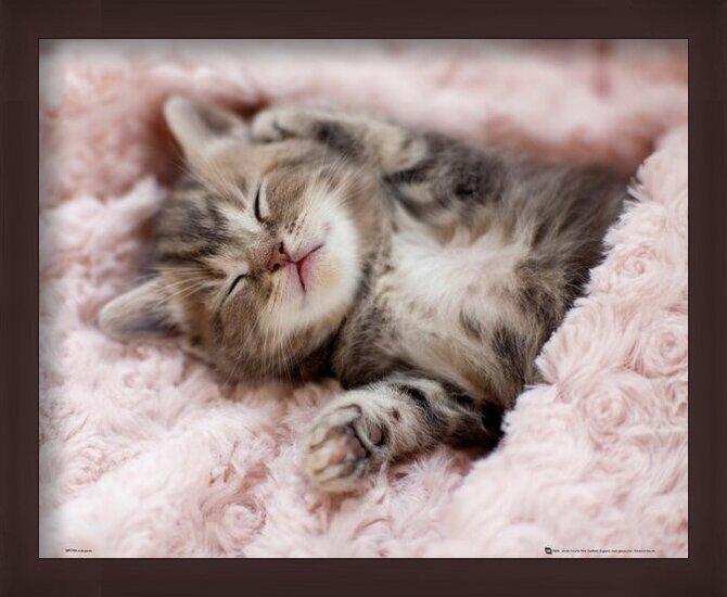 Katje - Sleeping Poster