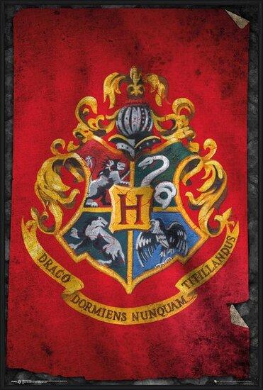 Harry Potter - Zweinstein Poster