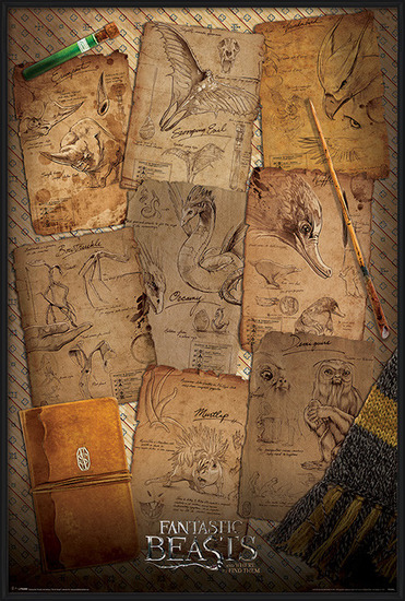 Fantastic Beasts And Where To Find Them - Notebook Pages Poster