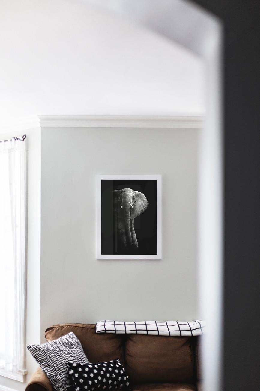 Kunst fotografie Elephant!